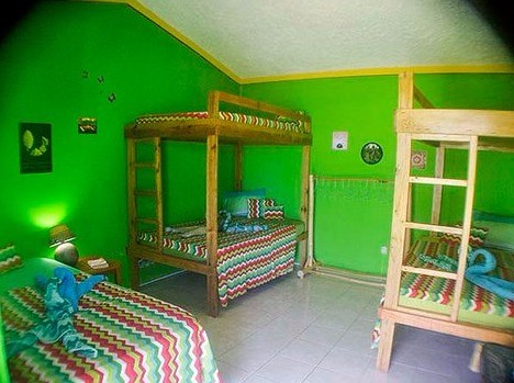 Shared Dorm at Go Natural Jamaica